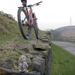 Trail Monkey loves the Pyga